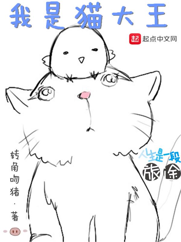 我是猫大王
